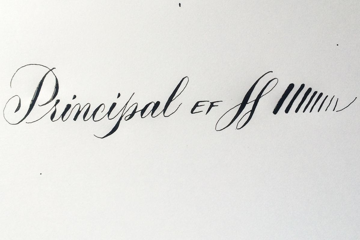 über-federn-principal